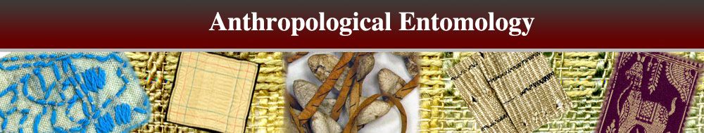 Anthropological Entomology Header