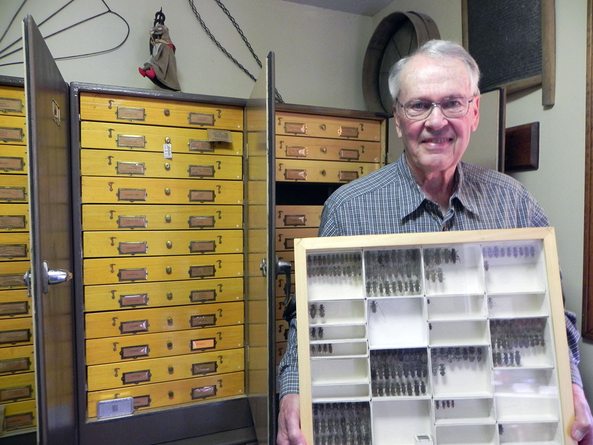 Leon Cambre with Cerambycidae Collection