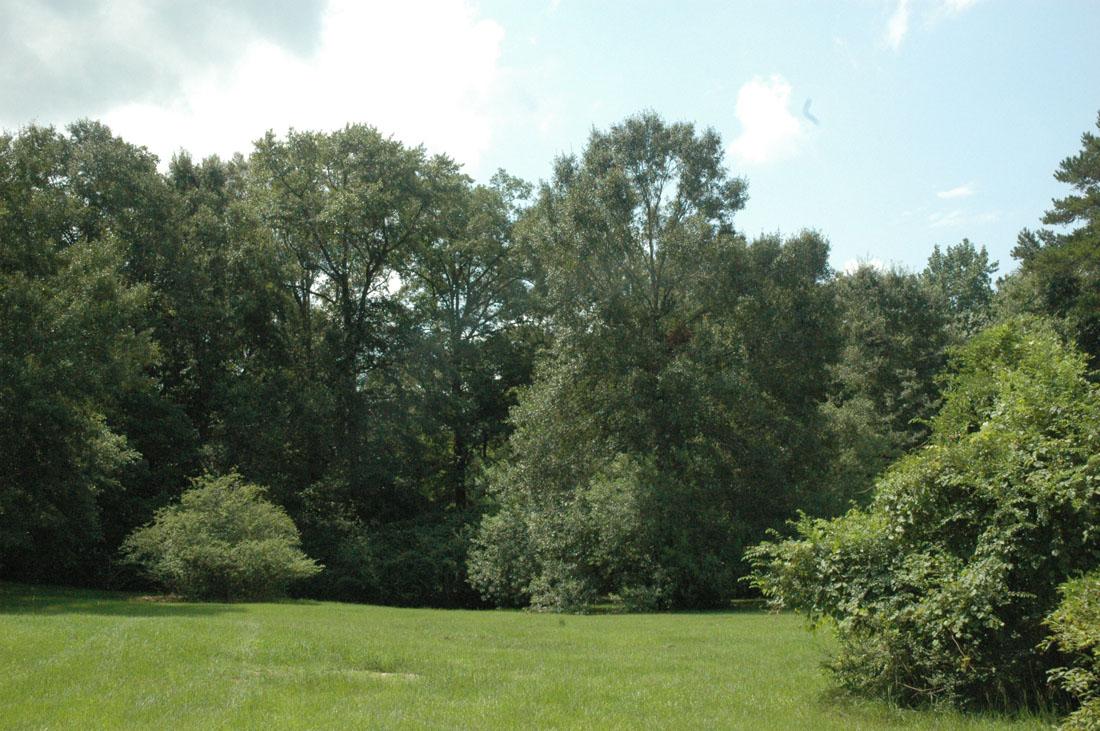 Washington County Property Appraiser Pennsylvania