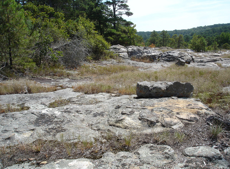 Petiti Jean Rock Outcrop