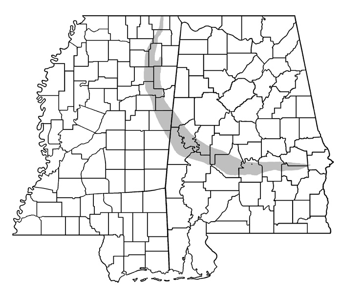 Image Result For Map To Mississippi